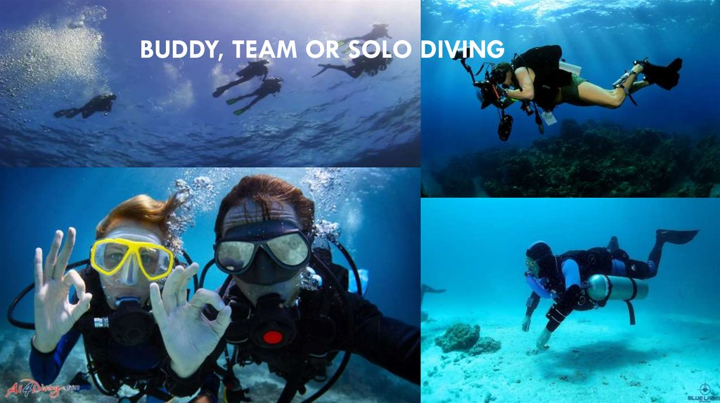 Buddy, team or solo diving