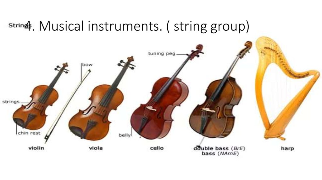 4. Musical instruments. ( string group)