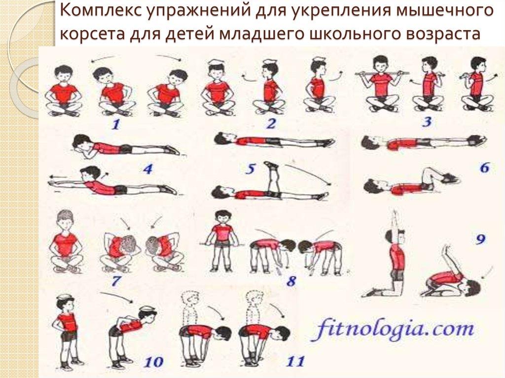 Вся суть упражнений в том, чтобы натренировать выносливость спинных мышц, в результате чего они длительно смолгут удерживать кроху в прямом положении.