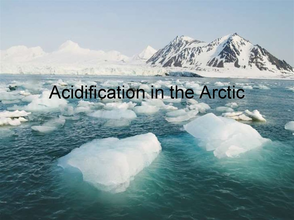 Acidification in the Arctic