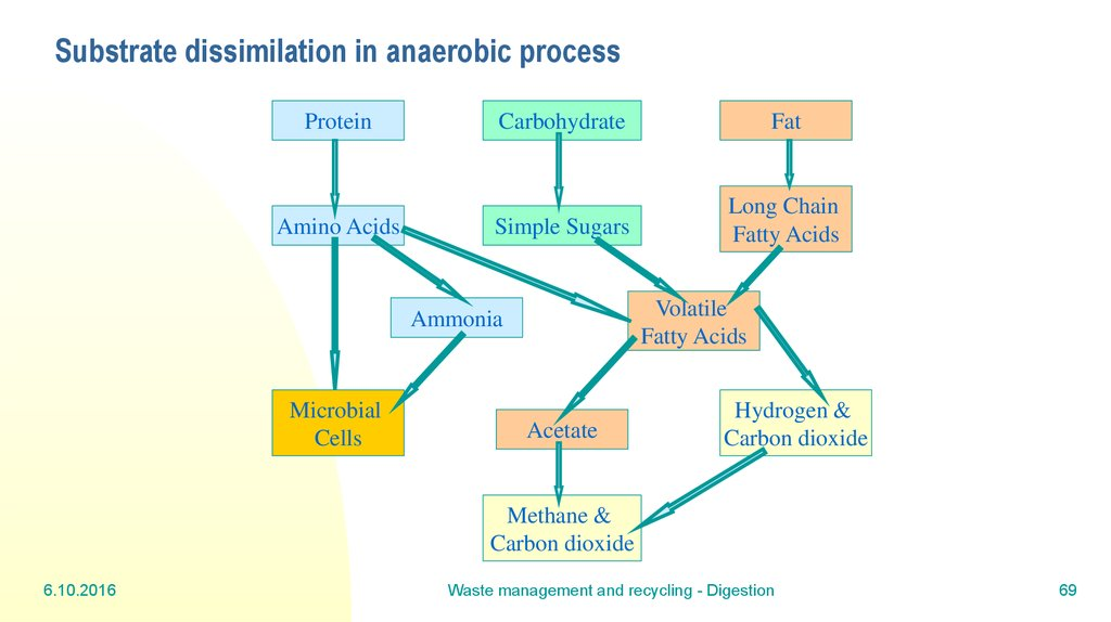 Substrate dissimilation in anaerobic process