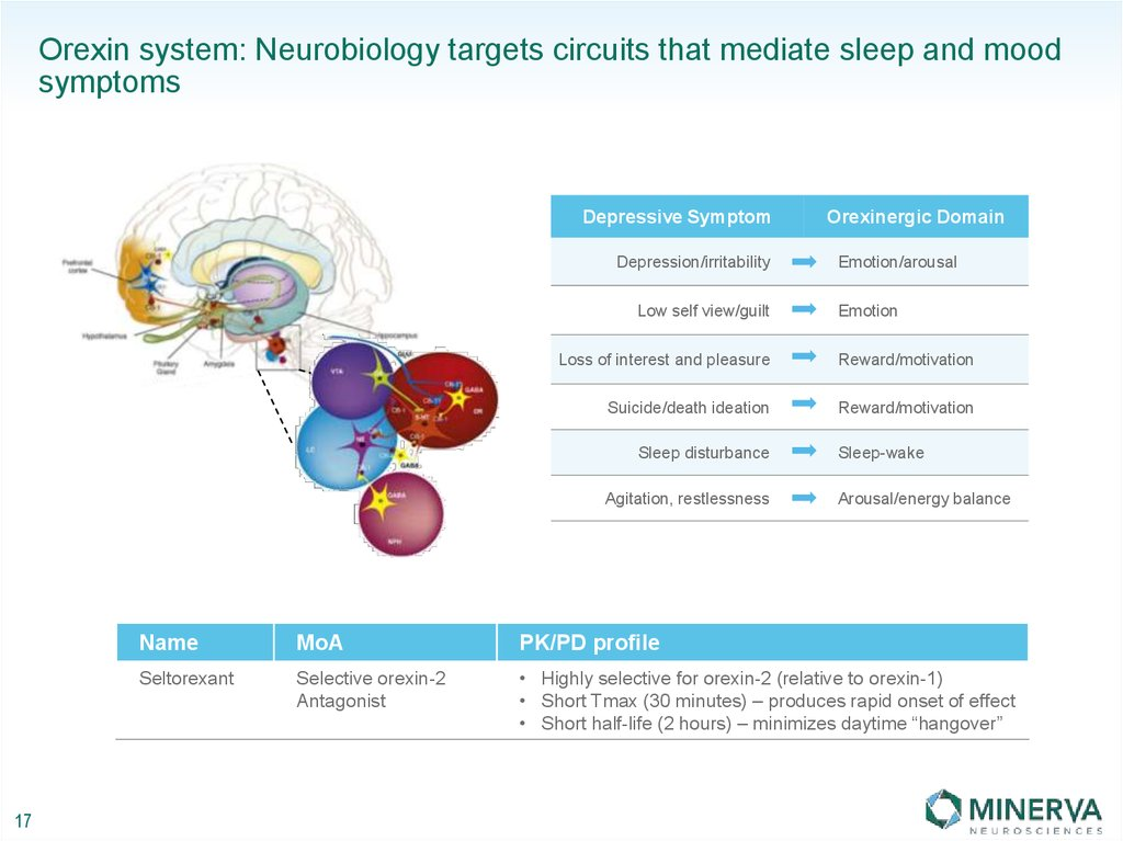 Orexin system: Neurobiology targets circuits that mediate sleep and mood symptoms