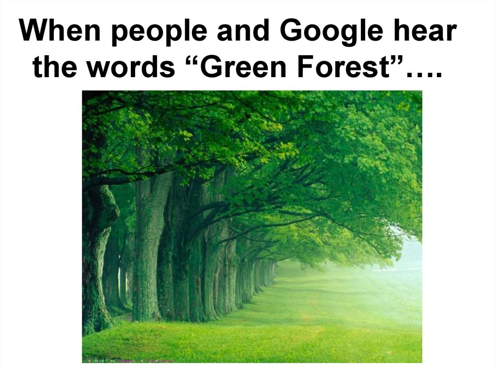 "When people and Google hear the words ""Green Forest""…."