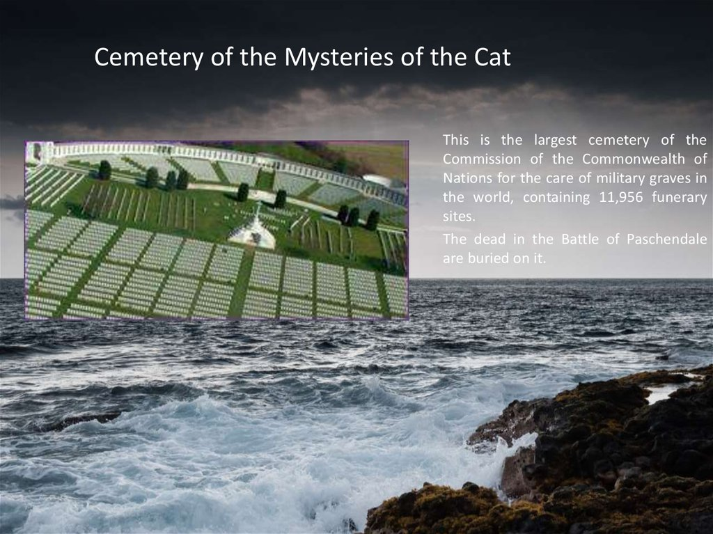 Cemetery of the Mysteries of the Cat