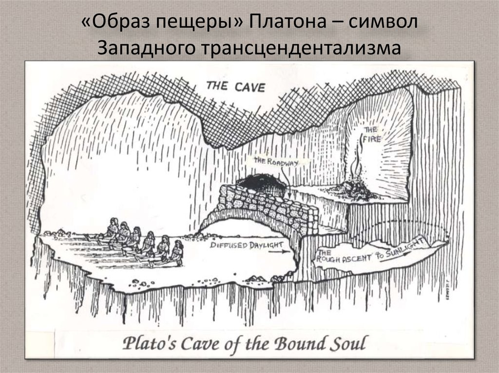 plato the cave This page seeks to apply plato's allegory of the cave to the circumstances peculiar to jehovah's witnesses, particularly the so-called 'apostates.