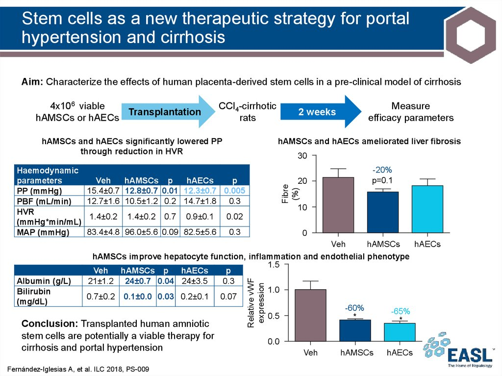 Stem cells as a new therapeutic strategy for portal hypertension and cirrhosis