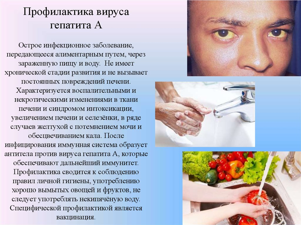 loblaws hepatitis a class ction essay © loblaws inc all rights reserved.