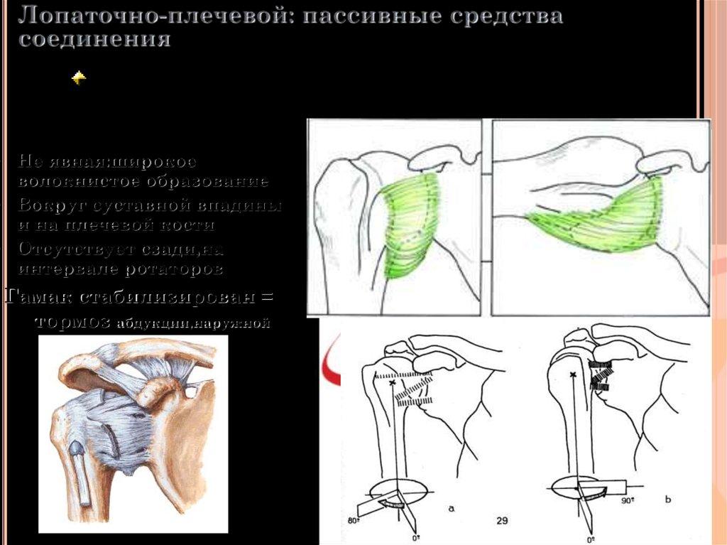 Абдукцию в плечевом суставе бандажи для коленного сустава для спортсменов