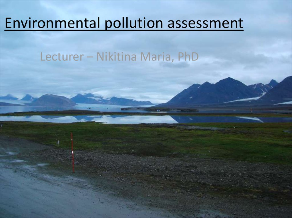 Environmental pollution assessment