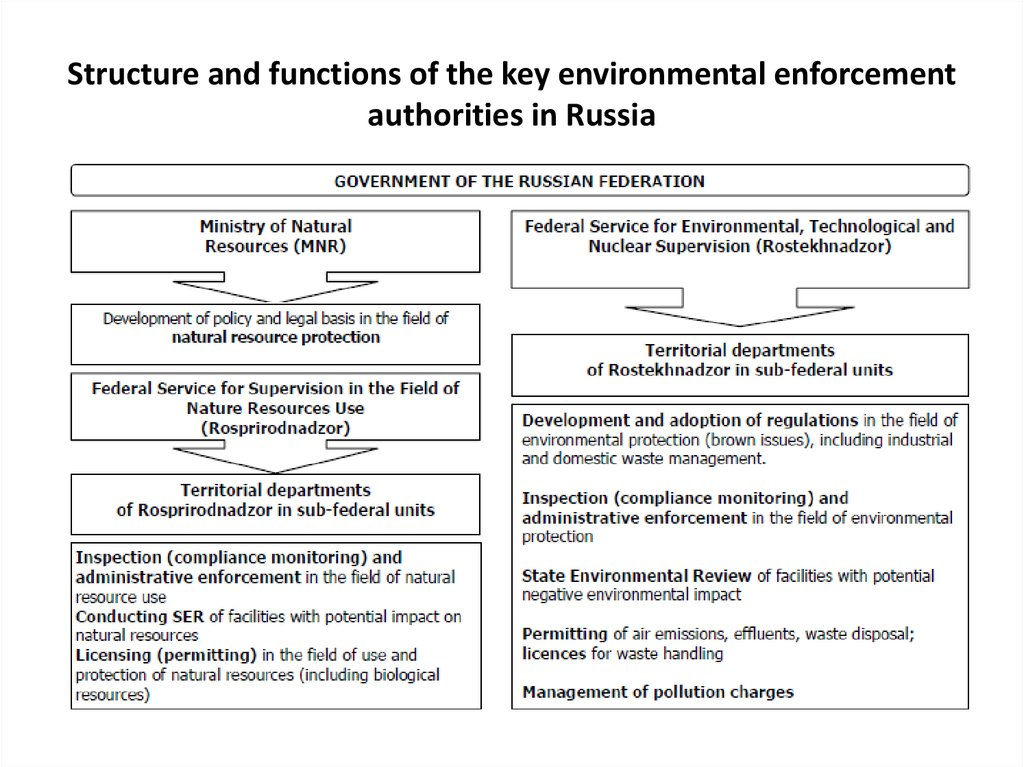 Structure and functions of the key environmental enforcement authorities in Russia