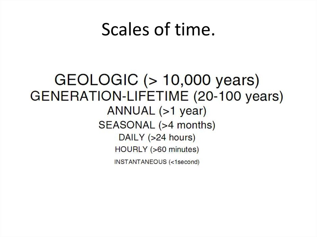 Scales of time.