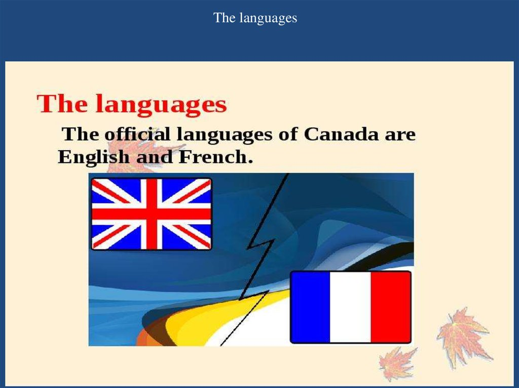 The languages