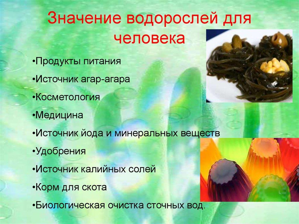 уверен, значения водорослей картинка делились