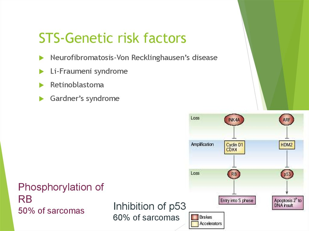 STS-Genetic risk factors