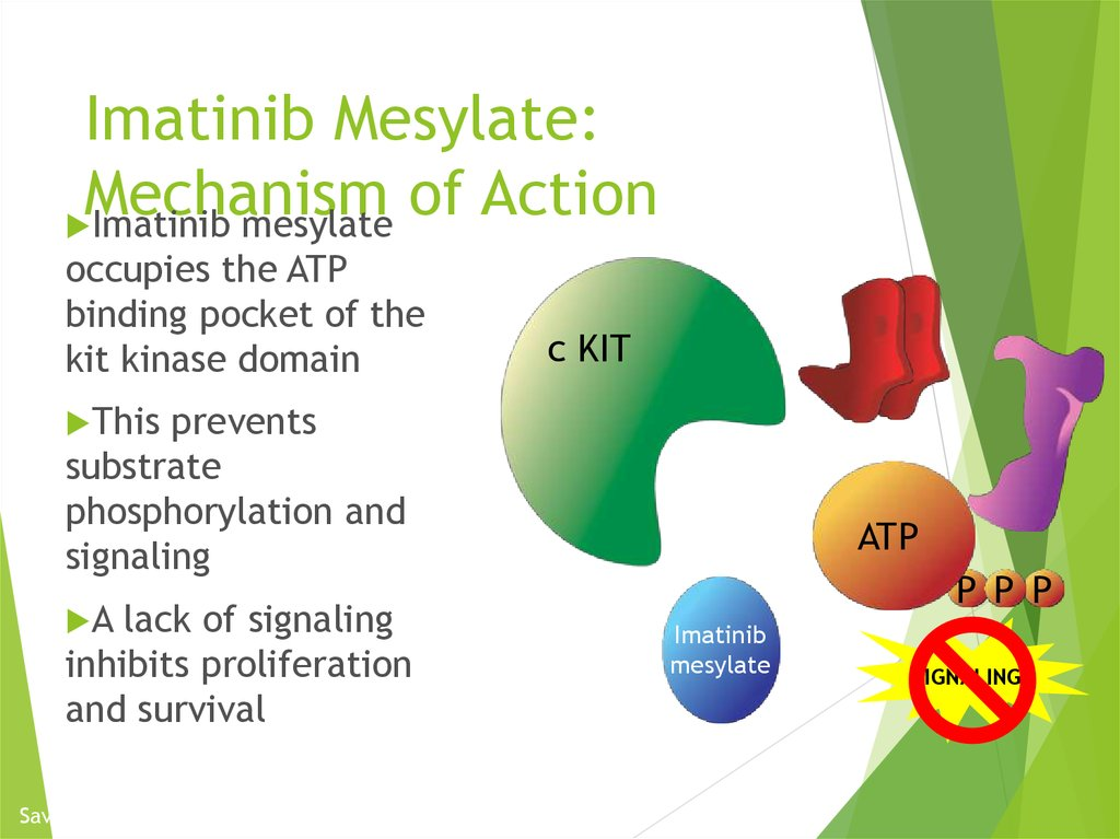 Imatinib Mesylate: Mechanism of Action
