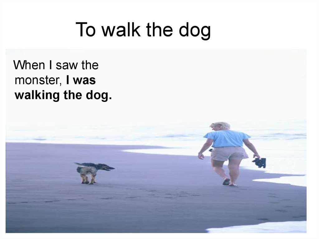To walk the dog