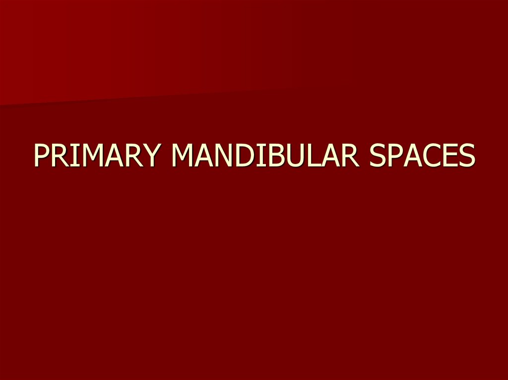 PRIMARY MANDIBULAR SPACES