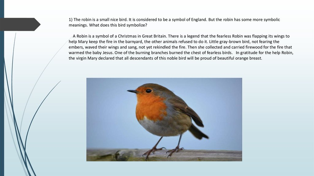 1) The robin is a small nice bird. It is considered to be a symbol of England. But the robin has some more symbolic meanings.