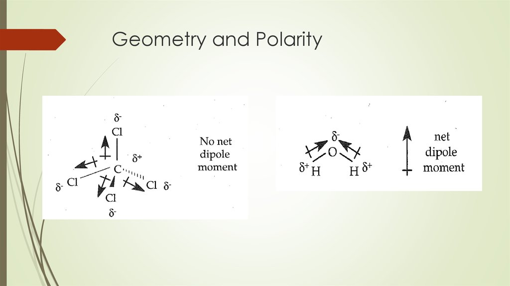 Geometry and Polarity