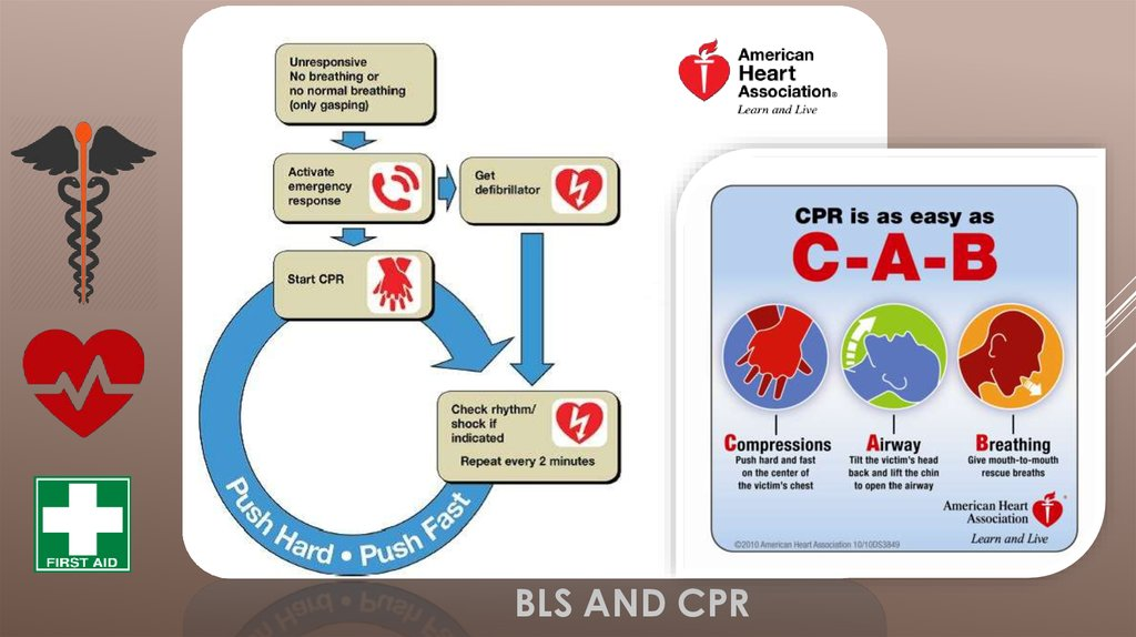 BLS AND CPR