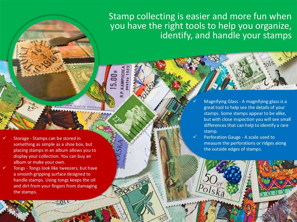 Stamp collecting is easier and more fun when you have the right tools to help you organize, identify, and handle your stamps