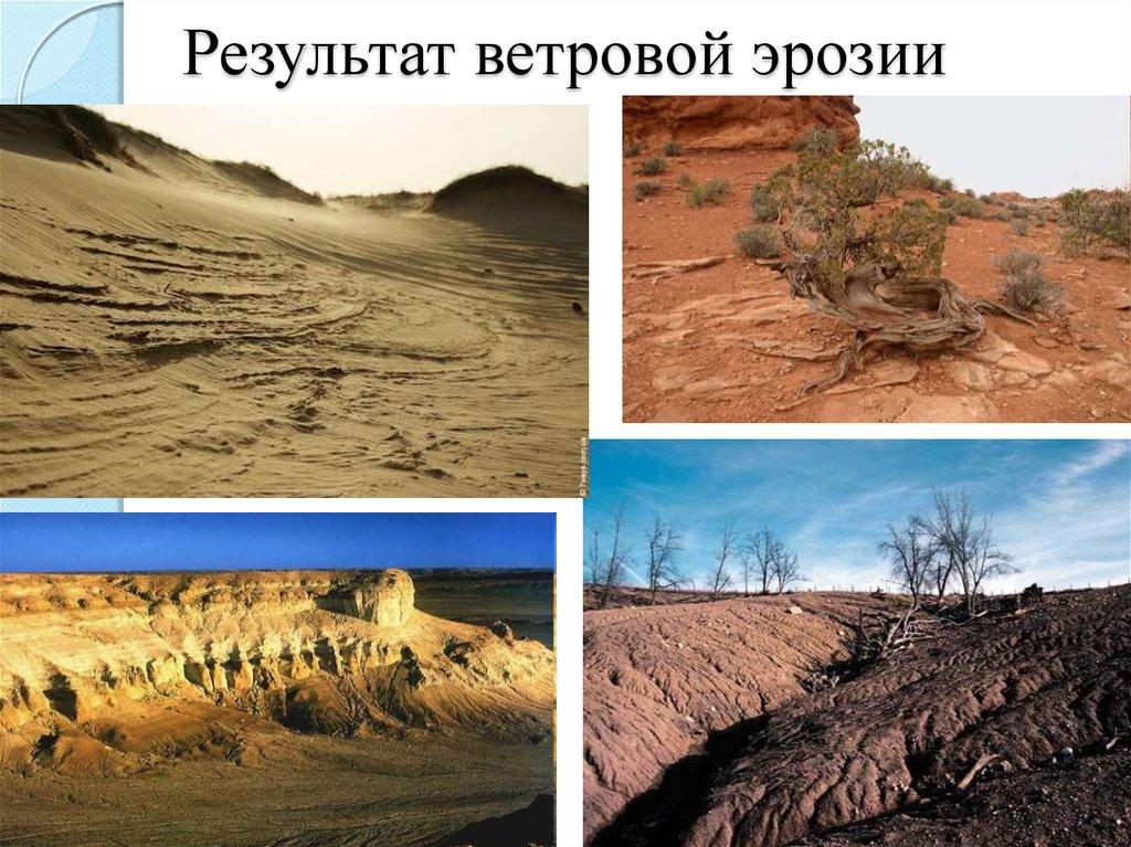Картинки по ветровой эрозии