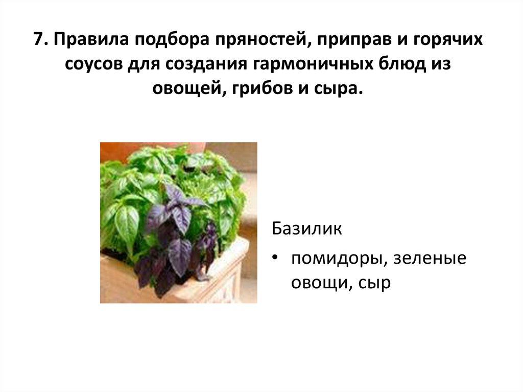 Блюд из овощей грибов и сыра