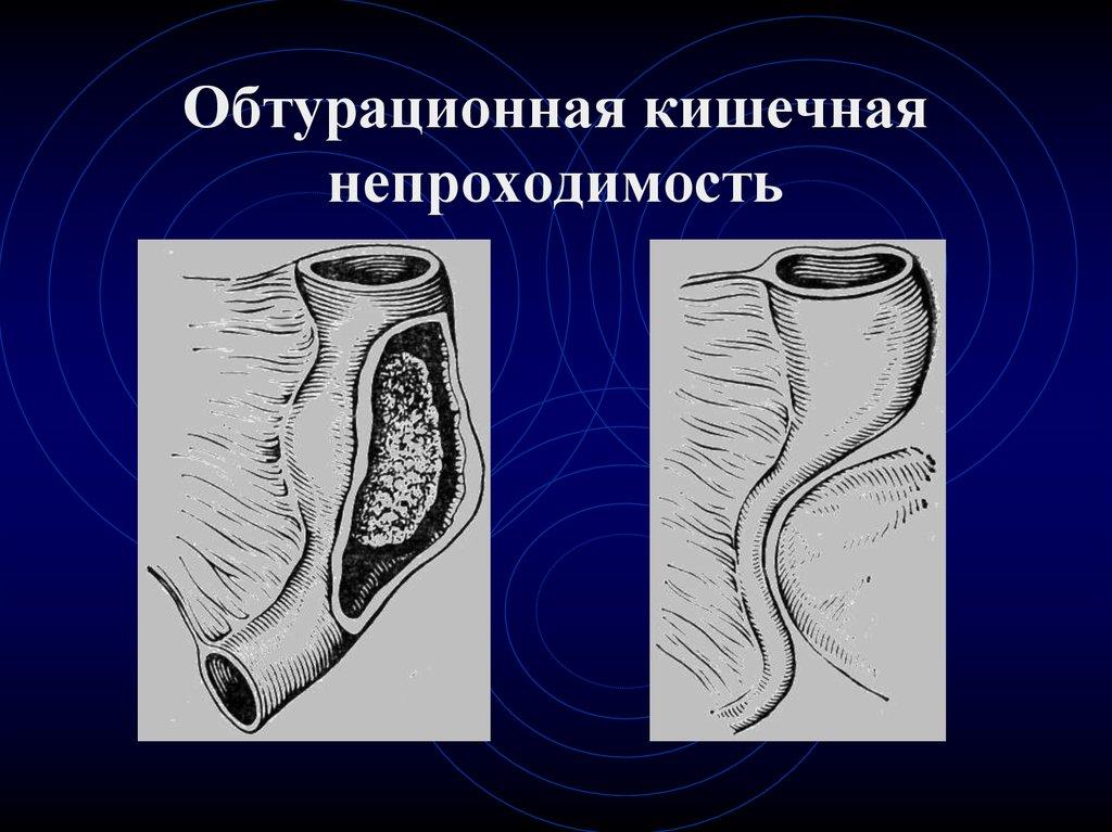 shop Stem Cells And Regenerative Medicine